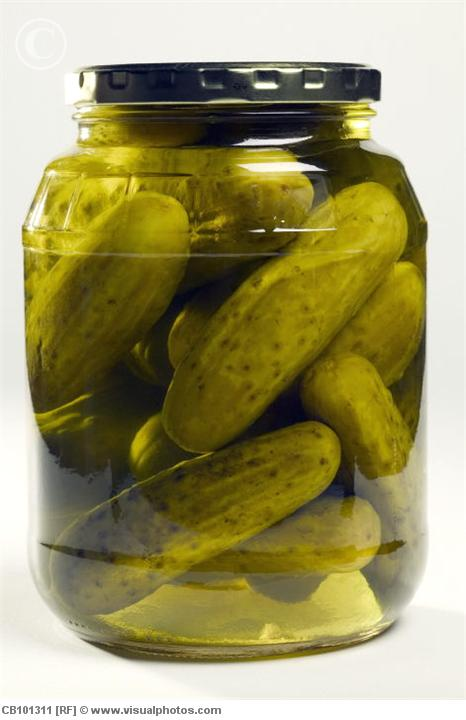 Jar of Pickles Frozen Pickle